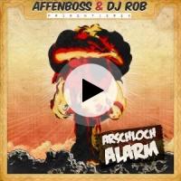 Affenboss Lyrics Song Meanings Videos Full Albums Bios Sonichits