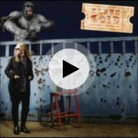 Silverbird karen zoid lyrics song meanings videos for Small room karen zoid lyrics